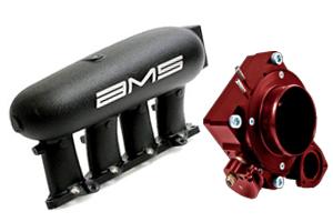 Intake Manifold & Throttle Body